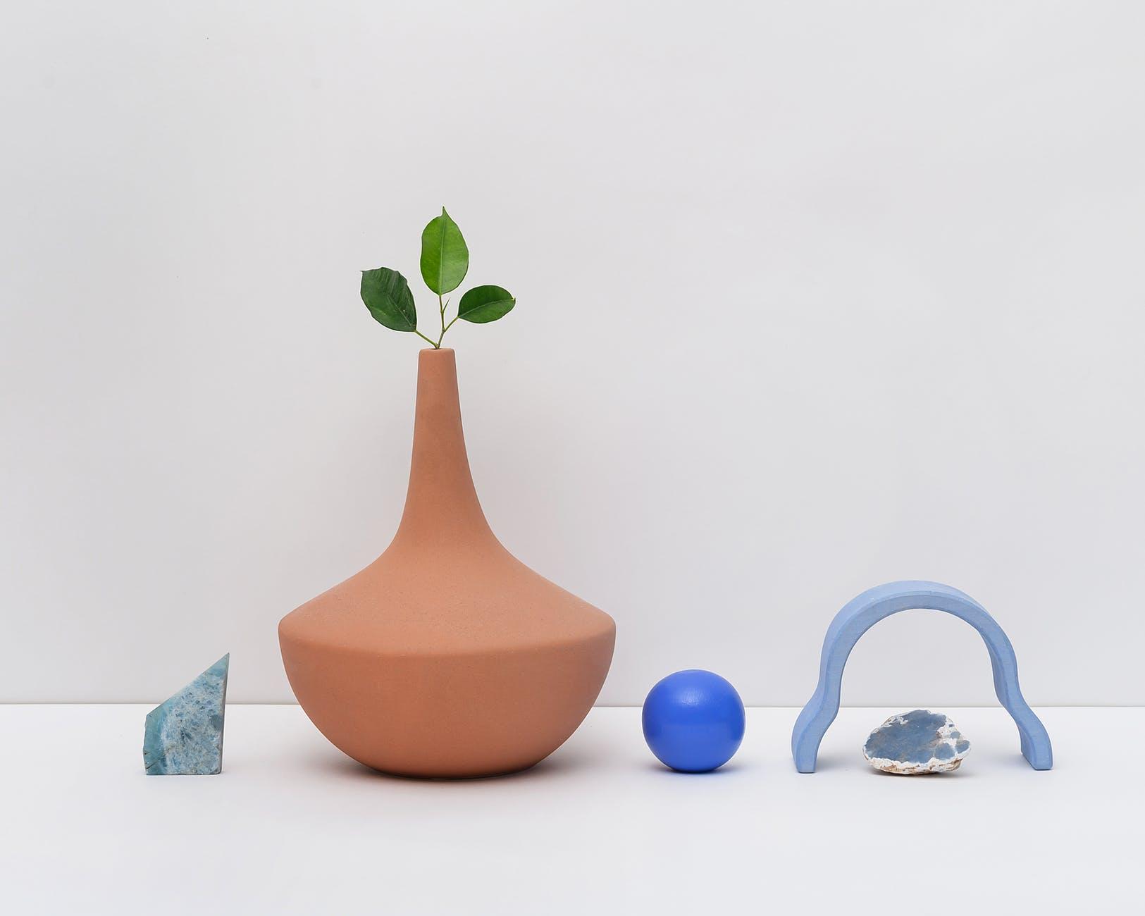 photo of leaves on brown clay vase